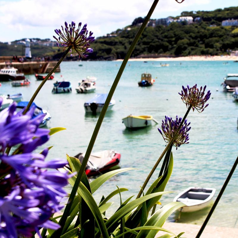 St Ives Accommodation - luxury five star apartments by the sea.