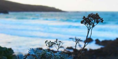Luxury short breaks in St Ives and Cornwall thumbnail