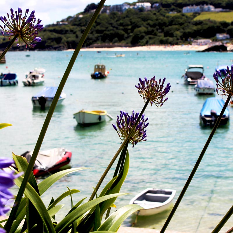 luxury group accommodation st ives harbour