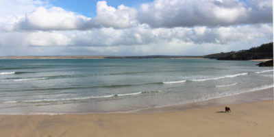 Luxury apartments in St Ives Beach