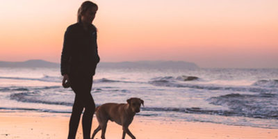 Luxury Dog Friendly Accommodation Beach