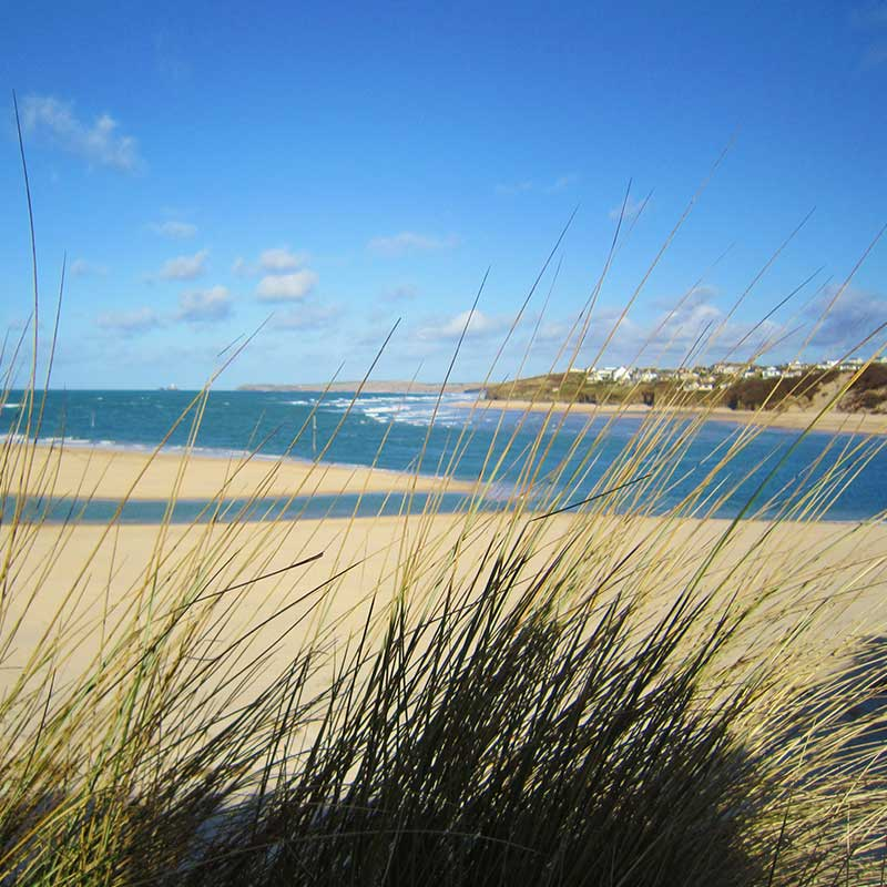 Hayle Estuary Dog Friendly Coastal Walks