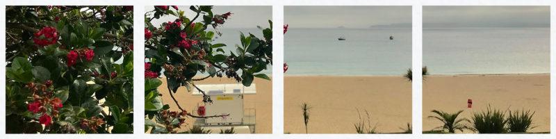 porthminster-coastal-walk-st-ives-cornwall