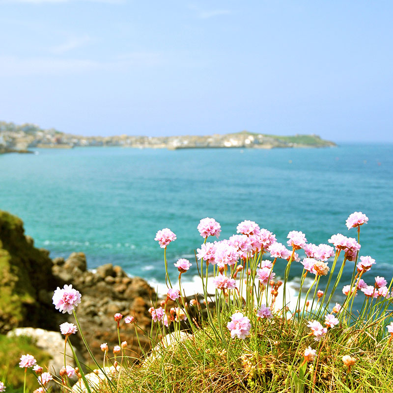 luxury self catering cottages in st ives, cornwall