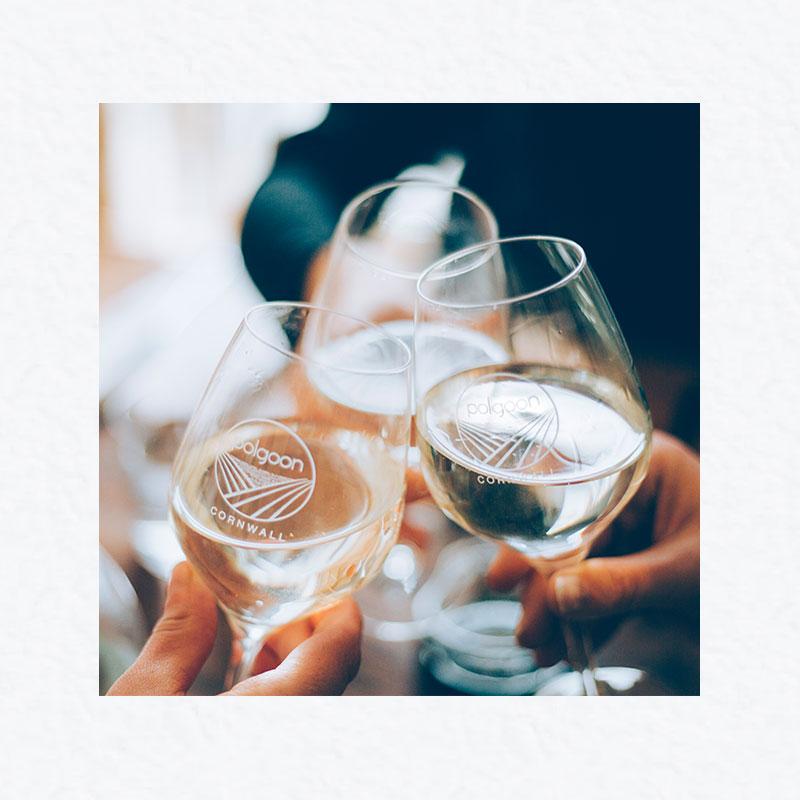 polgoon cornwall wine