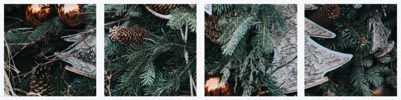 St Ives december activities
